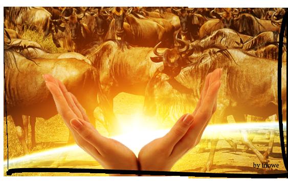 عندما يبدأ عقولنا بالأسئله, سنجد الاجابات في مخلوقات الله وعباده attachment.php?attac