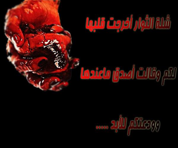 b20b75c34508effaaa188940e1438ca1