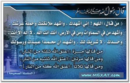 fe99c55efaaba701a985fc4170398535